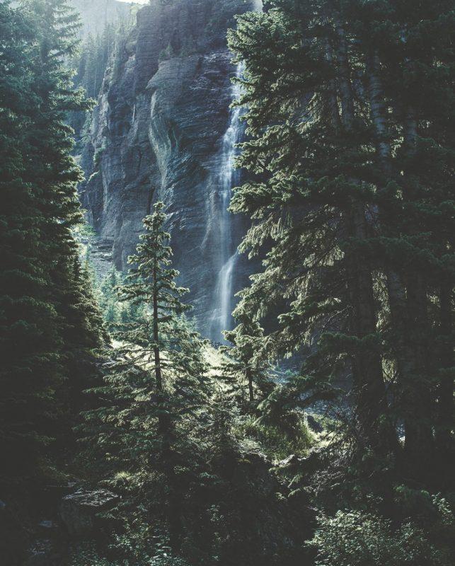 Träd framför vattenfall på berg